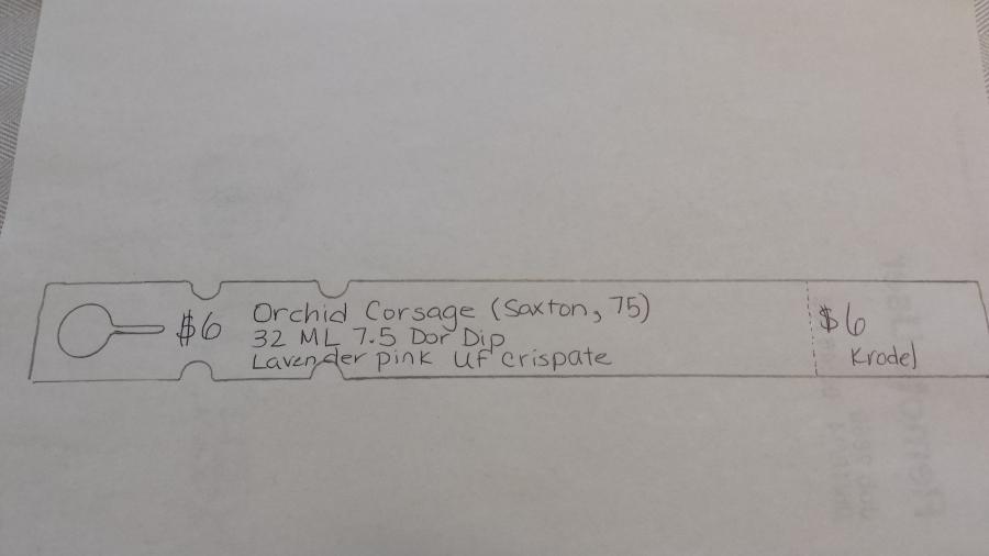 Sample Daylily Tag