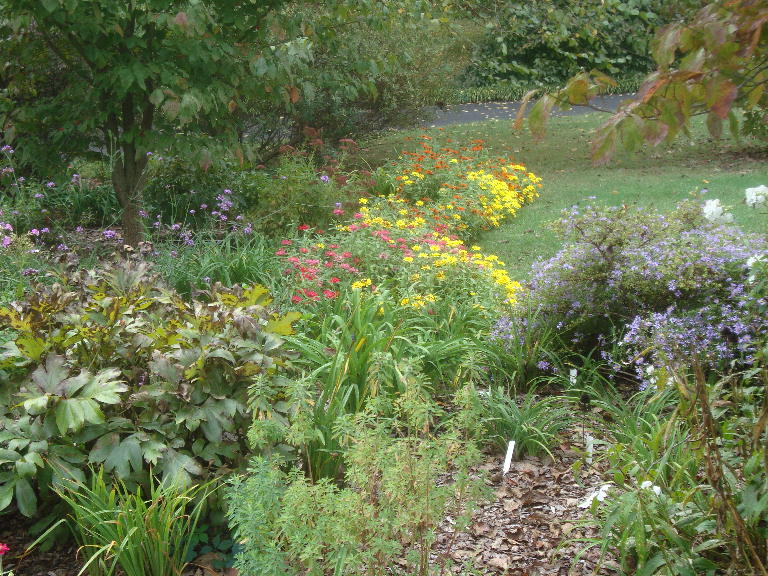 Front Perennial Garden looking south 9-27-15