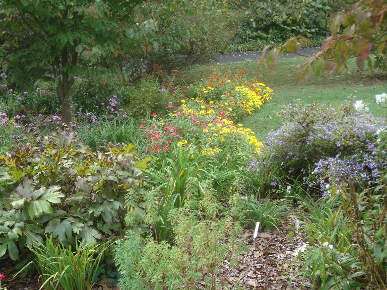 Front Perennial Garden looking south 9-27-15