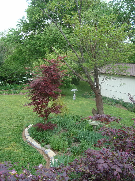 Birdbath Garden taken from the Deck 4-21-16