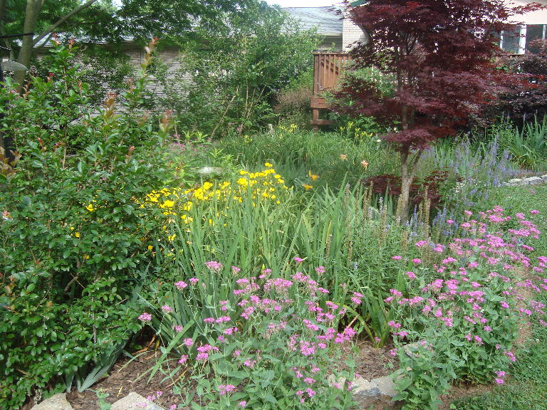 Birdbath Garden 5-31-16