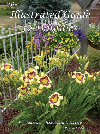 the-illustrated-guide-to-daylilies