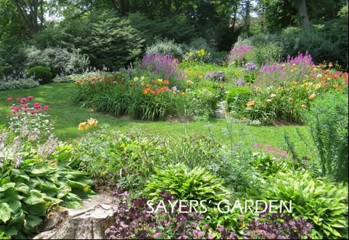 sayers-garden-for-wed-text